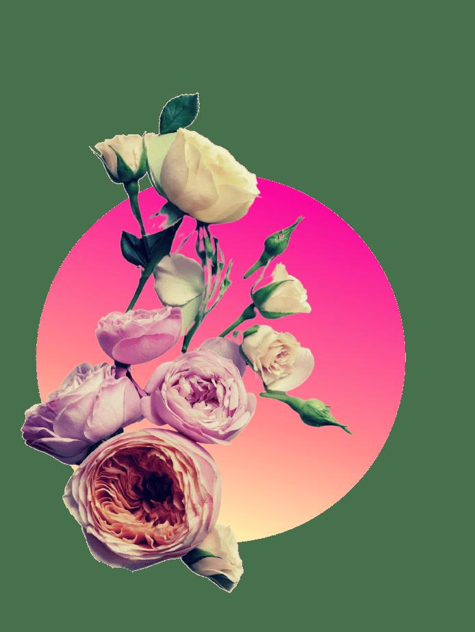 Muttertagsgeschenk Rosen